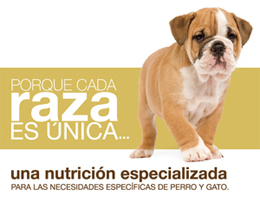 Breed Health Nutrition
