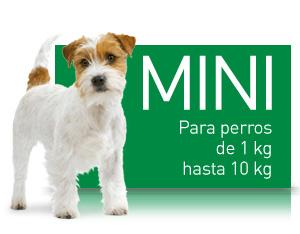 SHN - Mini (1 a 10 Kg.)